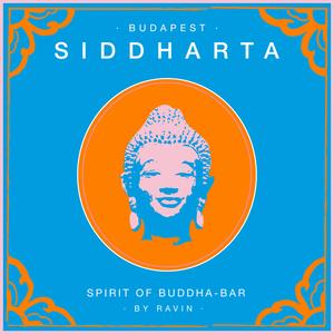 VARIOUS - Siddharta Spirit Of Buddha Bar Vol 5 Budapest (by Ravin)