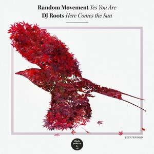 RANDOM MOVEMENT/DJ ROOTS - Yes You Are/Here Comes The Sun