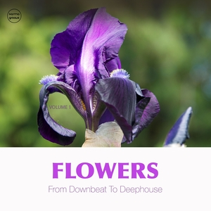 VARIOUS - Flowers Vol 1 (From Downbeat To Deep House)