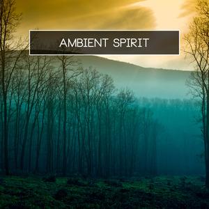 VARIOUS - Ambient Spirit
