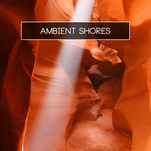 VARIOUS - Ambient Shores