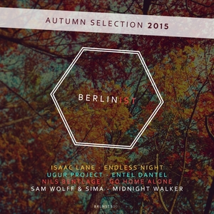 VARIOUS - Berlinist Autumn Selection 2015