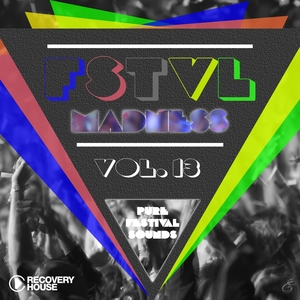 VARIOUS - FSTVL Madness Vol 13: Pure Festival Sounds