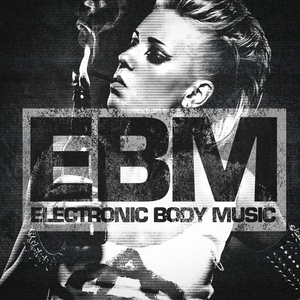 VARIOUS - EBM (Electronic Body Music)
