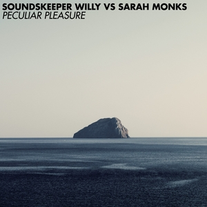 SARAH MONKS/SOUNDSKEEPER WILLY - Peculiar Pleasure