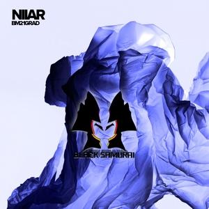 NIIAR - BM21Grad