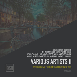 VARIOUS - Various Artists II