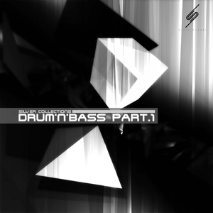 8 TO 7/DUSKAPE/IDZUCHI TAKL/EXTROSE/IKZ - Silver Collections: Drum'n'Bass Pt 1