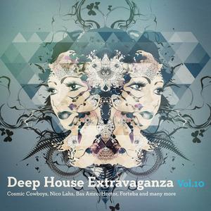 VARIOUS - Deep House Extravaganza Vol 10