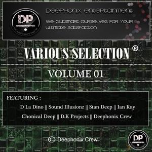 DEEPHONIX RECORDS - Various Selection Vol 1 2015
