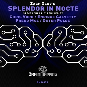 ZACH ZLOV - Splendor In Nocte Remixed