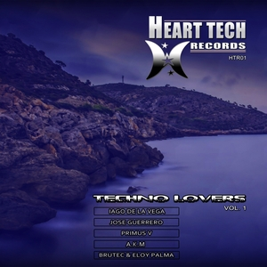 VARIOUS - Techno Lovers Vol 1