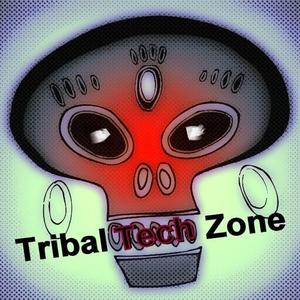 VARIOUS - Tribal Tech Zone