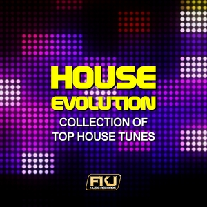 VARIOUS - House Evolution (Collection Of Top House Tunes)