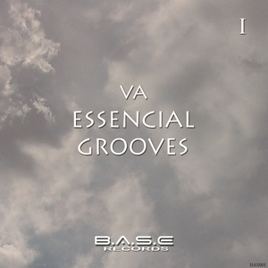 VARIOUS - Essencial Grooves