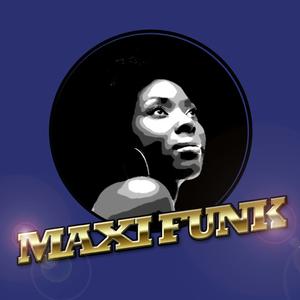 VARIOUS - Maxi Funk Vol 5