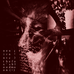UNCERTAIN - The Fox's Blood Moon (For Ian Johnstone)