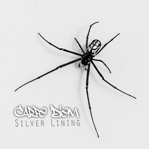 CARPE DIEM - Silver Lining Volume 1
