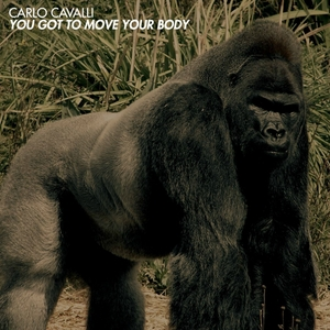 CARLO CAVALLI - You Got To Move Your Body