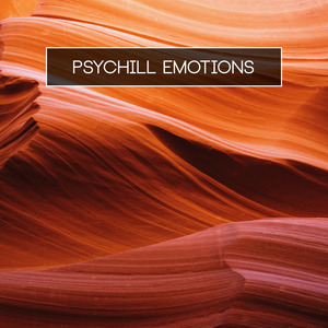 VARIOUS - Psychill Emotions
