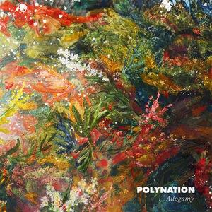 POLYNATION - Allogamy