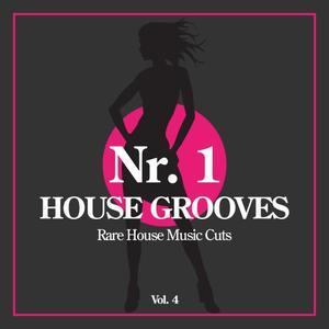 VARIOUS - Nr 1 House Grooves Vol 4 (Rare House Music Cuts)