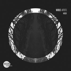 VARIOUS - Huldra Recordings