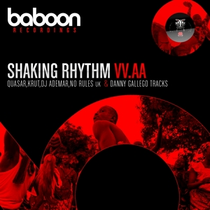 VARIOUS - Shaking Rhythm