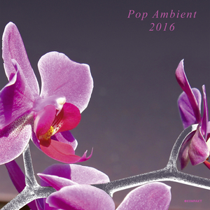 VARIOUS - Pop Ambient 2016
