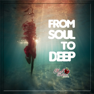 VARIOUS - From Soul To Deep
