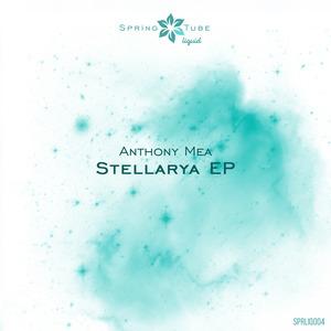 ANTHONY MEA - Stellarya