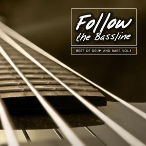 VARIOUS - Follow The Bassline Best Of Drum And Bass Vol 1