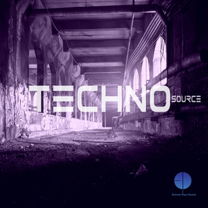 VARIOUS - Techno Source