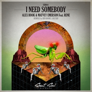 ALEX HOOK & MATVEY EMERSON feat RENE - I Need Somebody