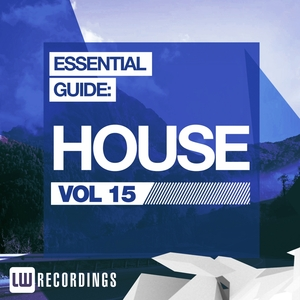 VARIOUS - Essential Guide: House Vol 15