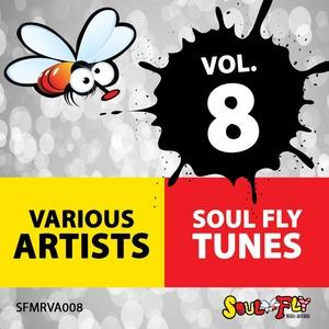 JONNYKNOX/ASTRA TECK/ERNESTO MENDOZA/ROBERTO ALUIGI - Soul Fly Tunes Vol 8
