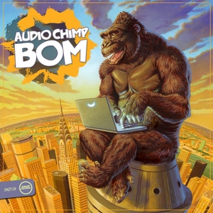 AUDIO CHIMP - Bom
