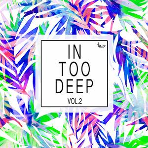 VARIOUS - In Too Deep Vol 2