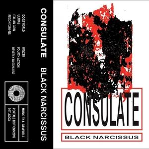 CONSULATE - Black Narcissus
