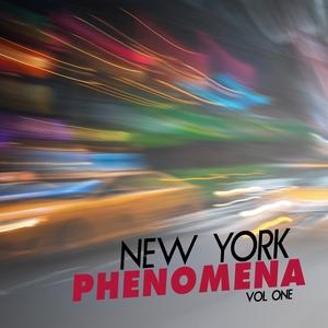 VARIOUS - New York Phenomena Vol 1
