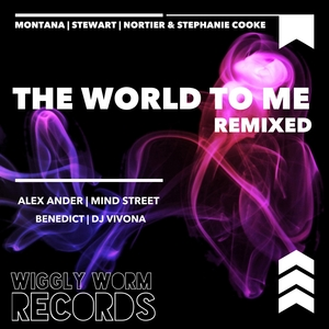 MONTANA & NORTIER/STEPHANIE COOKE/STEWART - The World To Me (Remixed)