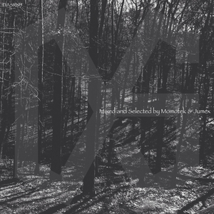 MOMOTEK/JUMEXVARIOUS - Dark & Sonorous Re Compilation Favorites Of 2015 (unmixed tracks)