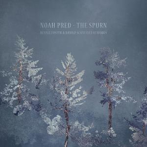 NOAH PRED - The Spurn