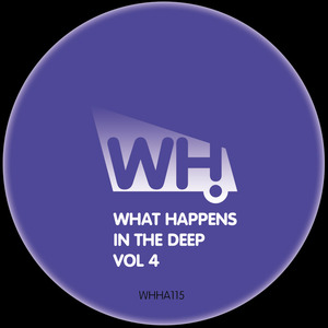 VARIOUS - What Happens In The Deep Vol 4