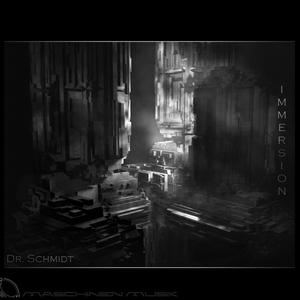 DR SCHMIDT - Immersion