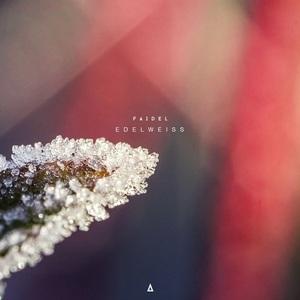 FAIDEL - Edelweiss