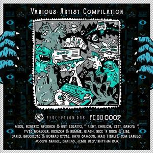 VARIOUS - Various Artist Compilation 2