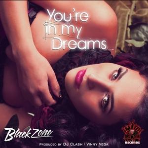 BLACKZONE PRODUCERS/DJ CLASH/VINNY VEGA - You're In My Dreams