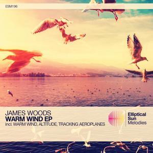 JAMES WOODS - Warm Wind EP