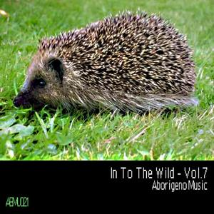 VARIOUS/BOY FUNKTASTIC - In To The Wild Vol 7